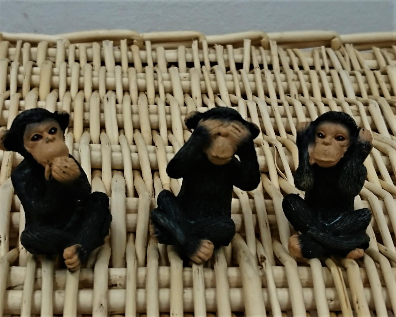Schimpansen sitzend